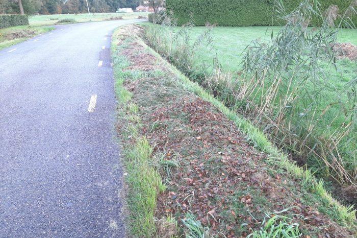 Dump geen tuinafval in de berm